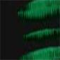 Nº69 Verde vejiga (trans o semitrans)