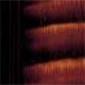 Nº75 Pardo óxido transparente